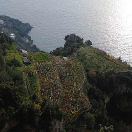 09-Ischia-Costiera-Tema-S.-Domenico-di-Praiano